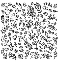 bullet journal hand drawn floral elements vector image