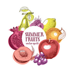 fruits hand drawn frame banner template vector image