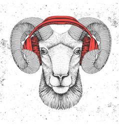 Hipster animal ram or mouflon with headphones vector