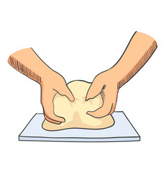 sketch of hands kneading dough vector image