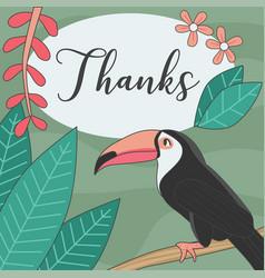 Thank you greeting card with toucan bird vector