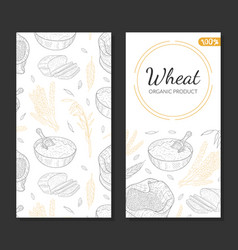 Wheat organic product card template agricultural vector