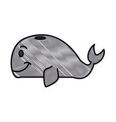 whale cartoon isolated vector image