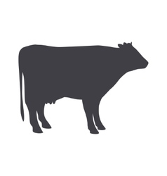 Black cow isolated on a white background vector image vector image