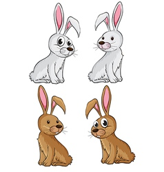 Four rabbits vector image