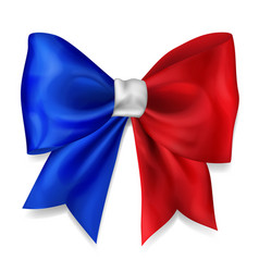 big bow in france flag colors vector image