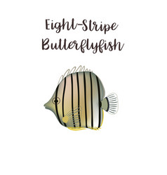 eight-stripe butterflyfish realistic vector image