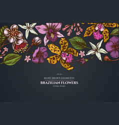 floral design on dark background with laelia vector image