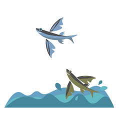 Flying fish or color vector