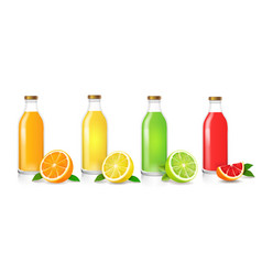 glass juice bottles set vector image