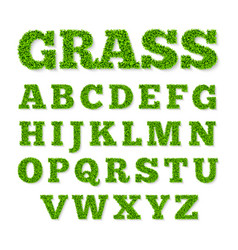 green grass alphabet vector image