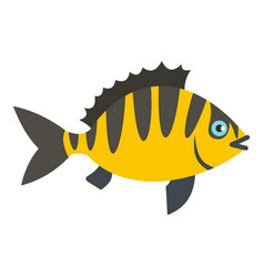 Perch fish icon isolated vector