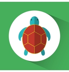 Tortoise cartoon over circle icon graphic vector image