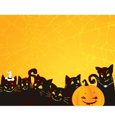 Halloween black cats and pumpkin vector image vector image