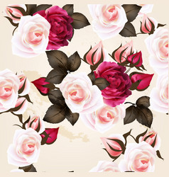 beautiful pattern with roses in vintage style vector image
