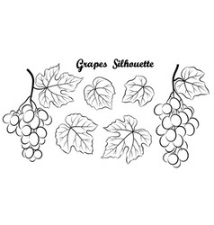Grape pictogram set vector