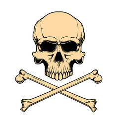 Human skull with crossbones design element vector