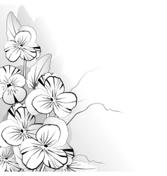 Pansy in black and white vector image
