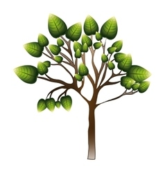 silhouette tree with leafy branches vector image