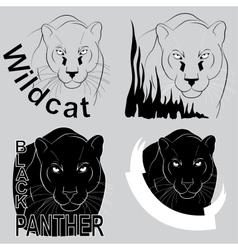 stylish logo black panther vector image