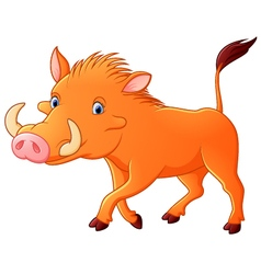 Cartoon warthog vector image