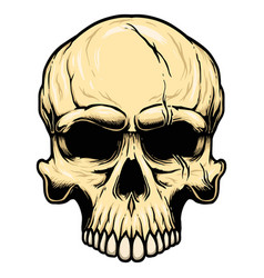 human skull in vintage style design element for vector image