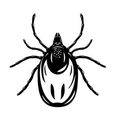 mite isolated black and white vector image