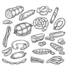sketches of sausage and wurst meat products vector image