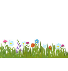 Summer green grass and flowers garden plants and vector