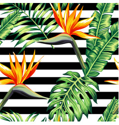 tropical floral seamless background vector image