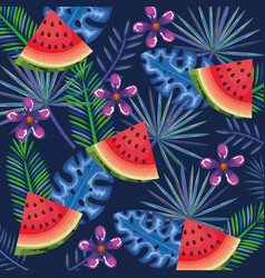 tropical garden with watermelon vector image