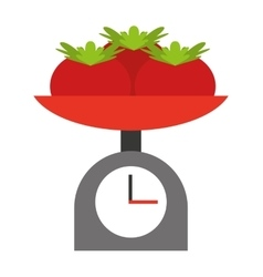 tomatoes balance isolated icon design vector image