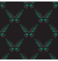 Seamless pattern with green-black butterfly vector image vector image