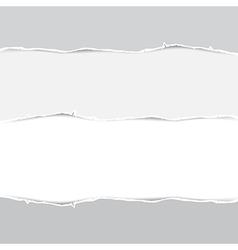 Torn Papers Background vector image