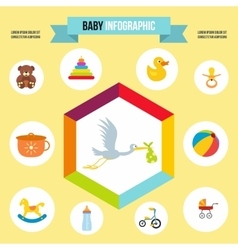 Baby infographic template flat style vector image