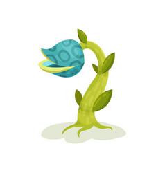 carnivore plant fantastic blue flower vector image