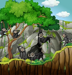 Group of gibbons climbing the tree vector image