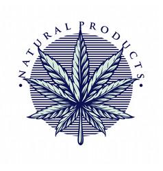 leaf marijuana vintage style vector image
