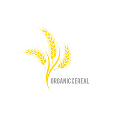 organic agriculture seed plant and food vector image