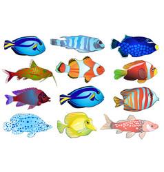 Set aquarium fish vector