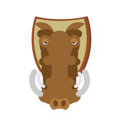 warthog hunting trophy head wild boar on shield vector image