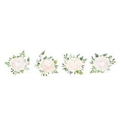 Floral bouquet design with white garden ranunculus vector