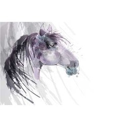 Horse head watercolor painting vector image vector image