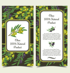 set of banners with olive branches with berries vector image vector image