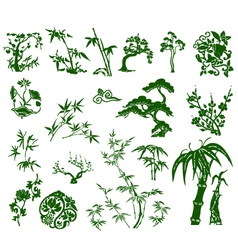 chinese bamboo plant vector image vector image