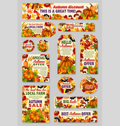 Autumn sale shop or farm market discount vector