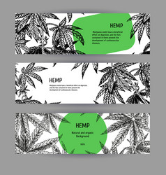 Banners with hemp leaves black-white design vector