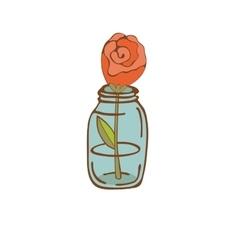 Beautiful rose in glass jar vector image