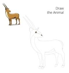 Draw animal gazelle educational game vector