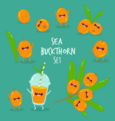 Sea buckthorn smoothies vector